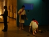 dress-rehearsal-005